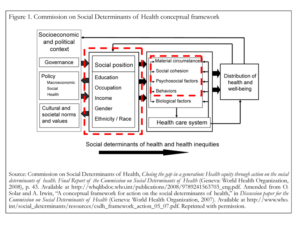 a-conceptual-framework-for-action-on-the-social-determinants-of-health-discussion-paper-for-the-commission-on-social-determinants-of-health